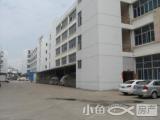 工业集中区独栋5层10600平出售2700万