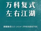 【绘就城市名片】万科城·玖龙台,启幕湖居2.0时代