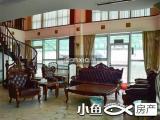 聚祥广场258平楼中楼带露台看白鹭洲全湖景急降300万