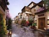 泰禾汀溪院子高端别墅亚洲十大豪宅天然温泉入户送私家双车库