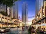 厦门海沧马銮湾带5年租约一手商铺,五年租金是总价的三成,免中介费