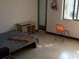 湖里金尚路禾山中学旁太微花园单身公寓出租30m²
