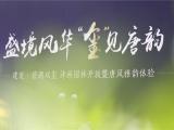 【建发·碧湖双玺】雅献唐风 诗画盛境惊鸿绽放