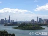 南湖豪苑高层看全湖景看公园3房读槟榔名校售860万