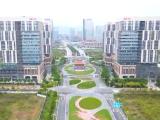 集美新城中轴线道路景观效果提升 两万平方米绿化呈现四季花海