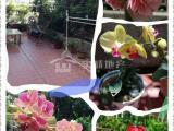 莲前卧龙晓城、欧式精装、3房2卫、超大露台、花园、果园、菜园