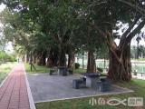 思明白鹭洲路25m²,港龙花园沿湖店面新装