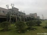 灌口龙湖新壹城2室1厅1卫47m²
