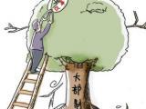 """厦门市规划委:坚持""""阳光""""审批   新建项目都有专属""""二维码"""""""