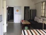嵩屿南二里汇景雅苑1室1厅1卫40m²