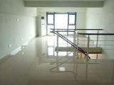 房东出租,免中介,高档,采光格局好,温馨舒适,居家办公很好
