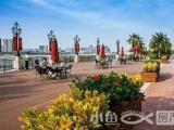 三盛国际海岸最后两栋79-99㎡墅区高层热销中均价12888元/㎡起