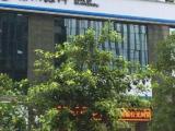 观音山国际商务整层写字楼9室5厅4卫4069.00㎡