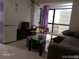 软件园二期南门碧海晴空一室一厅出租采光好装修清爽