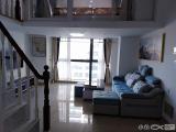 信洲国际大厦精装修电梯2室1厅1厨1卫2000元