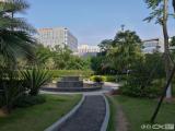 湖里创新园、红星美凯龙旁、安岭路、金海湾财富中心急售259m²