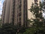 新阳工业区融侨观邸3室2厅2卫145m²