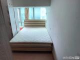 思明厦禾路火车站文灶BRT旁九龙城迷你小单间出租咨询+13666083156