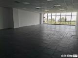 观音山沿海一排荣鑫盛商务大厦212㎡带全新精装修隔间
