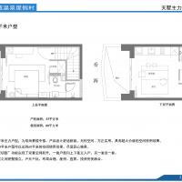 海明威温泉度假村53m²双海景楼中楼平面.jpg