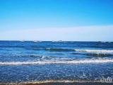 廈門灣南岸!萬人沙灘!海上樂園??!明發香山灣!歡迎來電資詢?。?!