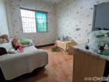 绿杨村精致一房一厅全明邻近BRT采光通风好低首付