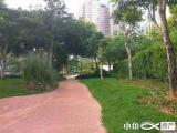 厦禾路中山公园旁,挑高户型,BRT二市海翼大厦旁写字楼
