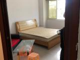 杏林日东明珠1室0厅1卫45m²
