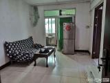 绿杨村,精装一房一厅仅1700元,采光好,家电齐全,拎包入住,看房有锁,超实惠哟