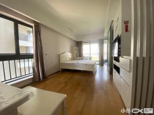 厦门市思明区会展路海峡国际单身公寓房源出租59m²