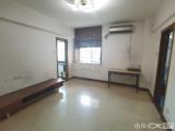 卧龙晓城BRT沿线正规一房一厅房东诚意出售